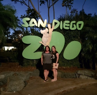 Cindy Cathy Zoo