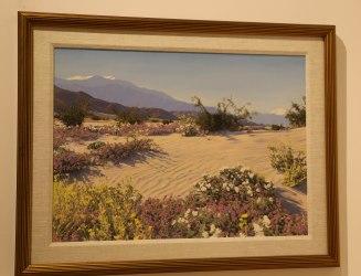 Stephen Willard - Desert Blossom Time