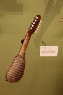 Armadillo shell guitar!