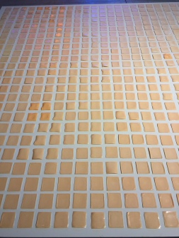 Cheese Grid, yes, this is really cheese (The Art Guys)